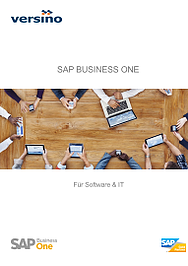 Whitepaper SAP B1 für IT & Software